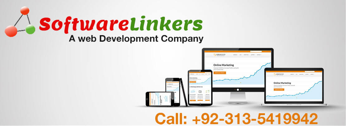 Why SoftwareLinkers Web Development and Designing Company - Softwarelinkers