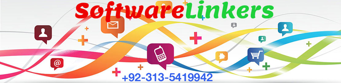 Web Deisgn Company in Sargodha - Software Linkers