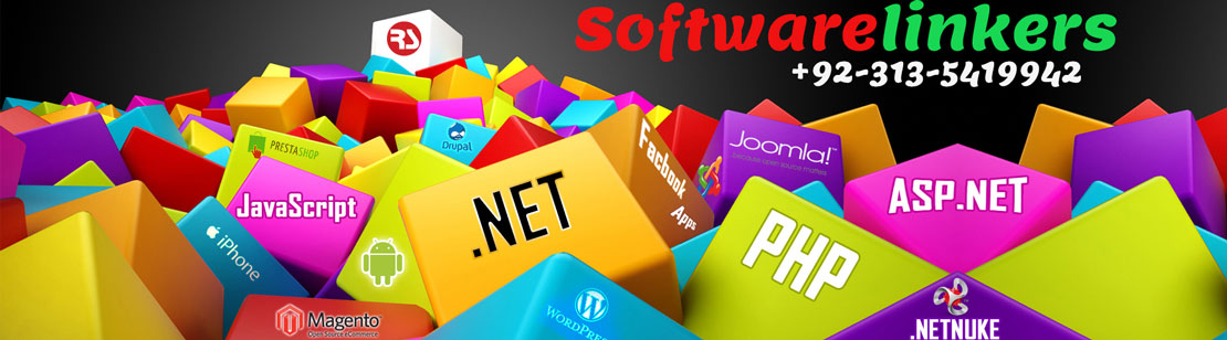 Web Design Company Sialkot Pakistan - Software Linkers