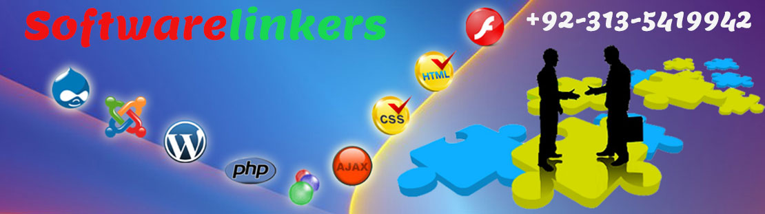 Web design company Karachi Pakistan - Software Linkers