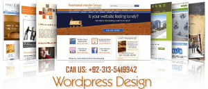 Wordpress Design Website