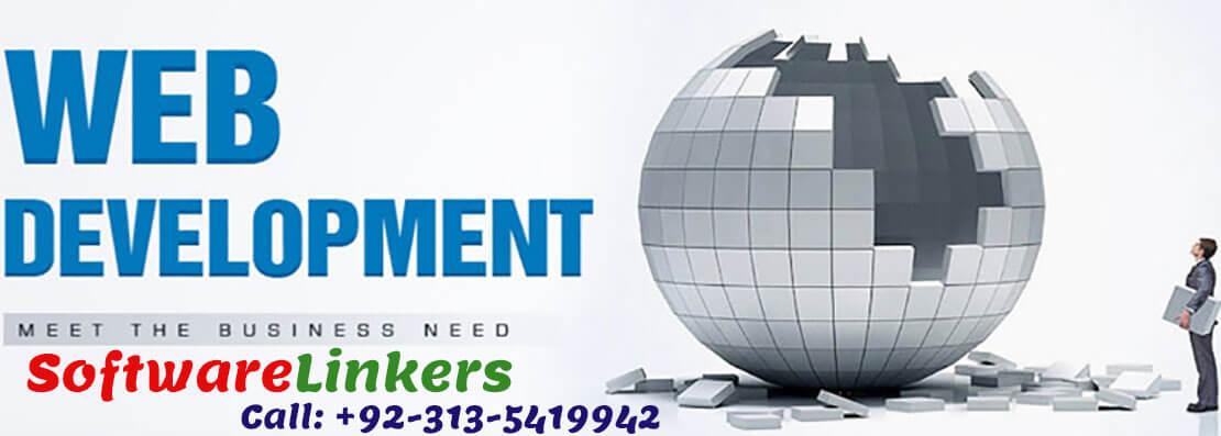 Professional Website builders | Developers - Software Linkers