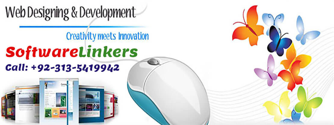 Web Design and layout - Software Linkers Web Development Company