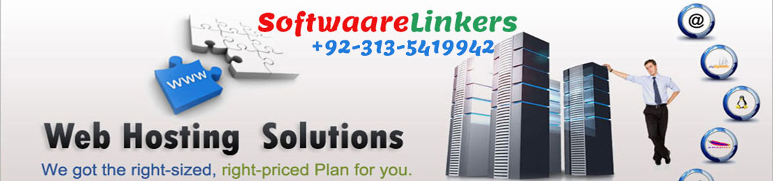 Hosting and Email Services Toronto - Software Linkers
