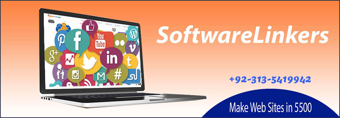 Web Design Company in Peshawar - Software Linkers