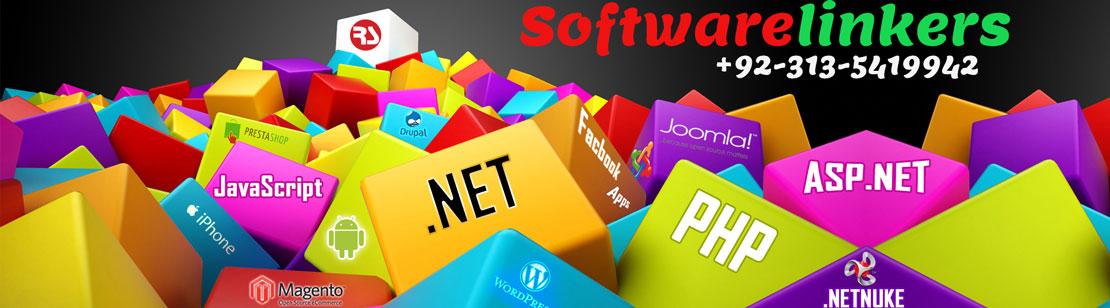 Web Design Company Sialkot Pakistan - Software Linkers