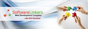 Website designing company in Hafizabad
