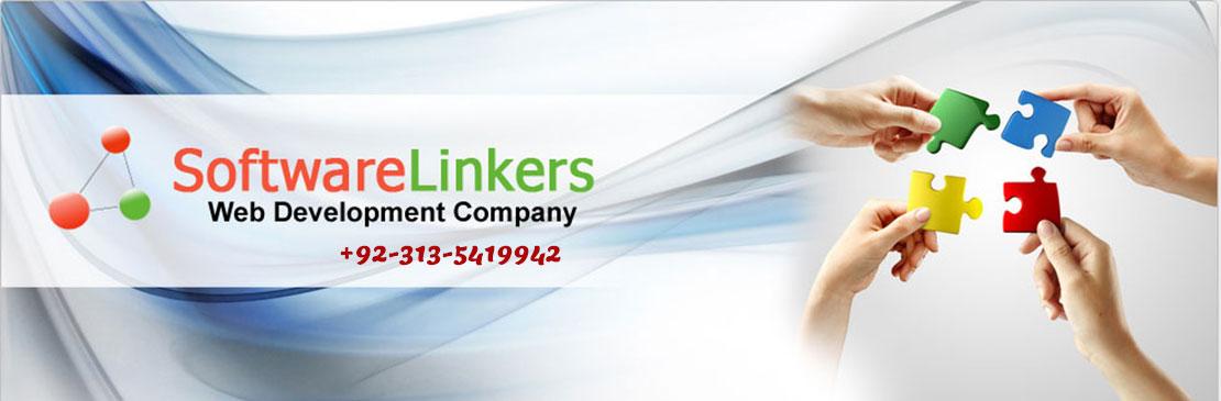 Web Designing Company Hafizabad - Software Linkers