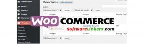 Woo Commerce web design