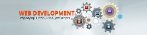 Web Professional Development